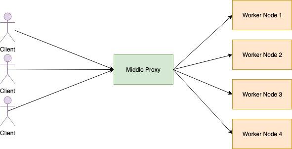 middle proxy.jpg