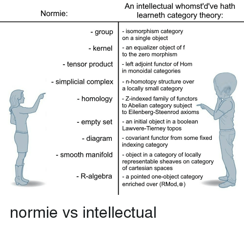 meme_category_theory.png