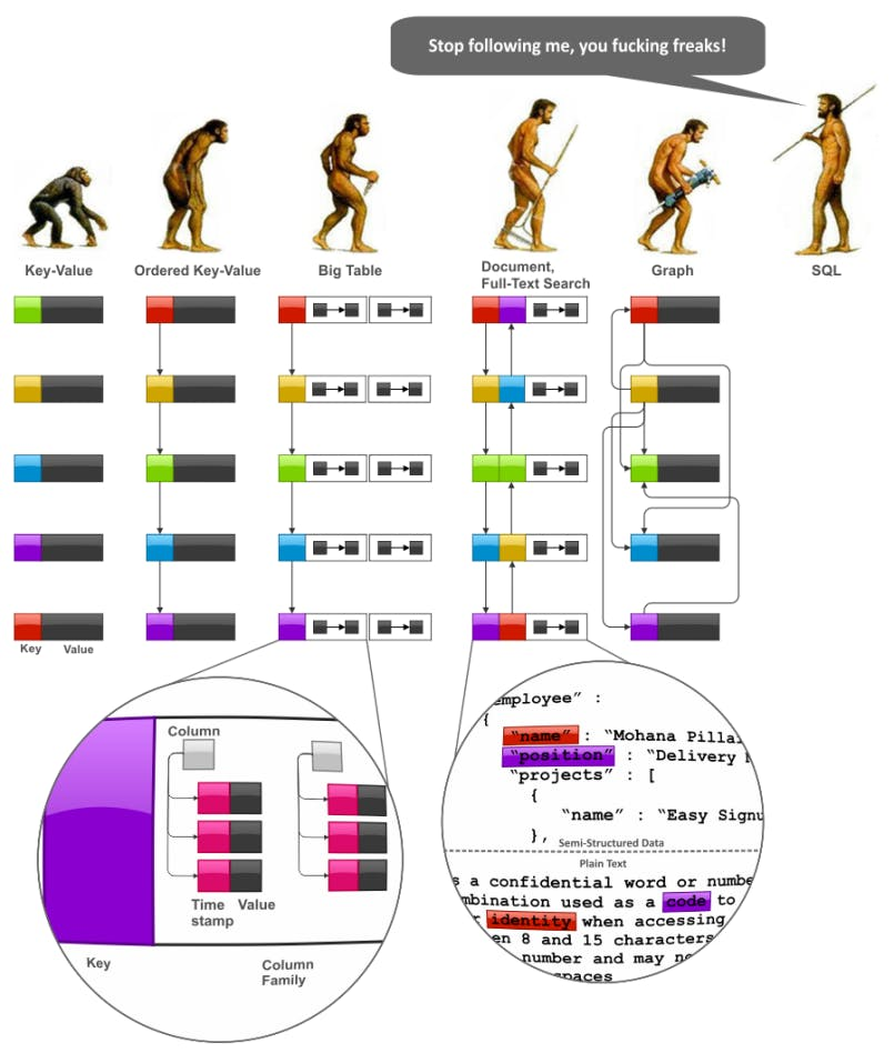 fun image comparing databases.png