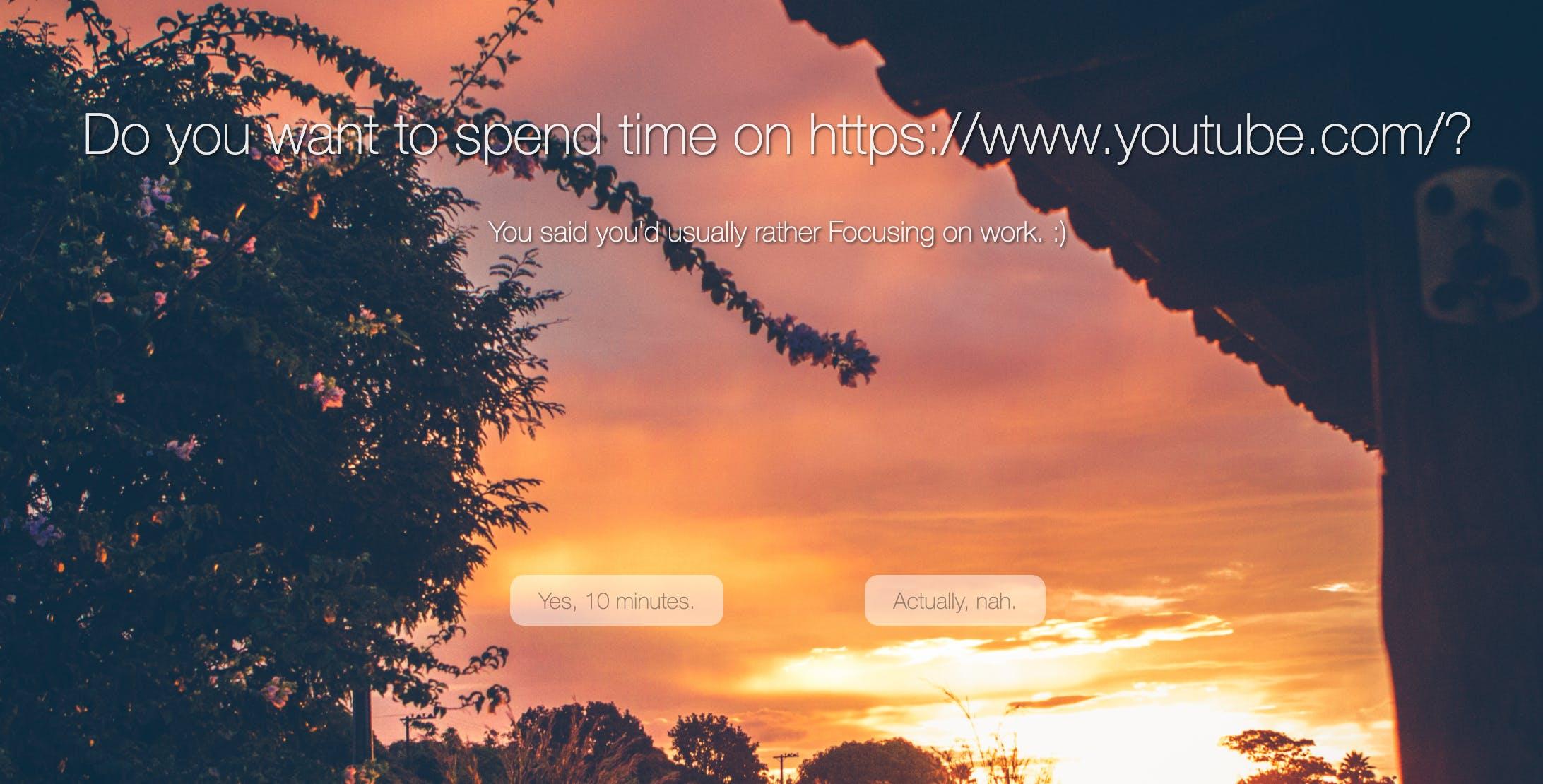 Screen Shot 2020-08-05 at 10.46.51 PM.png