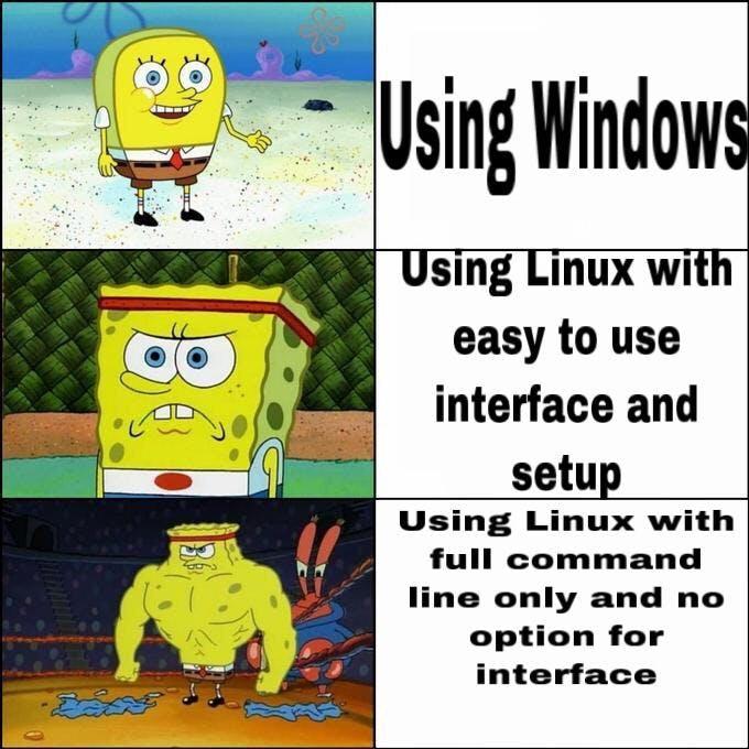 lin_meme_1.jpg
