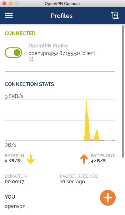 open_vpn-connected.png