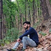Kshitiz Saini's photo