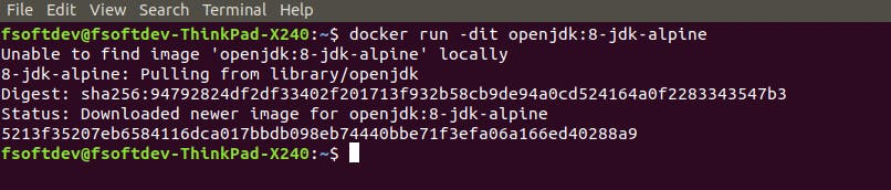 ss-docker-run-1.png