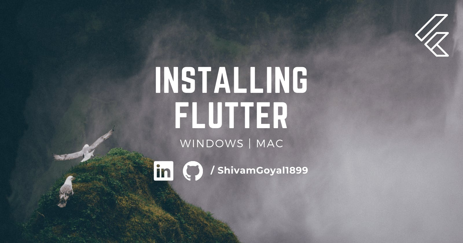 How to install Flutter on Mac & Windows