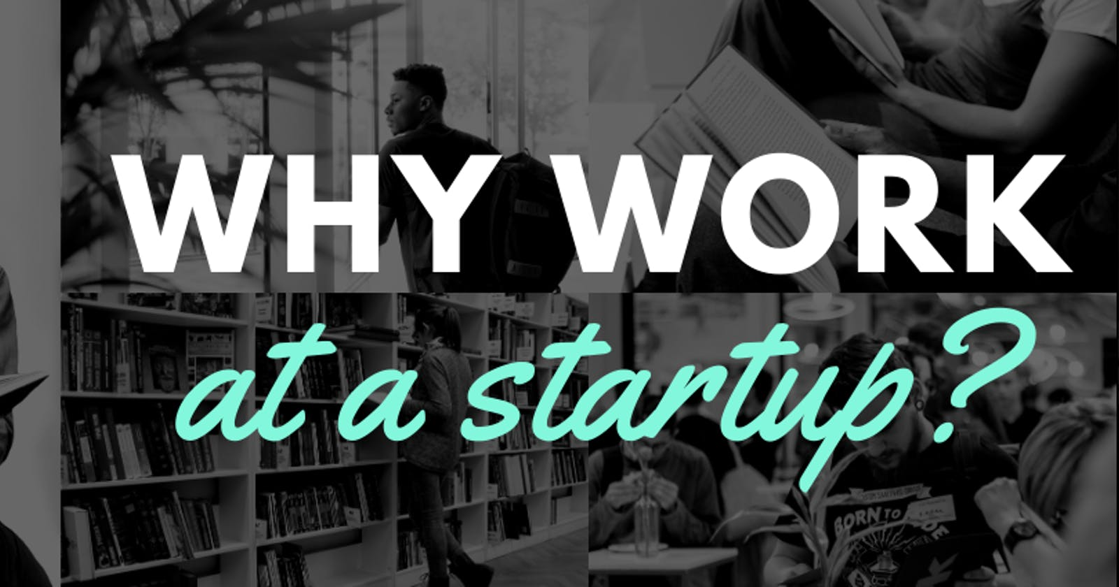 Why work at a Startup and What to expect?