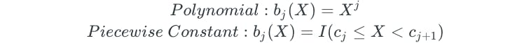 basis-polynomial-piecewise-constant.png
