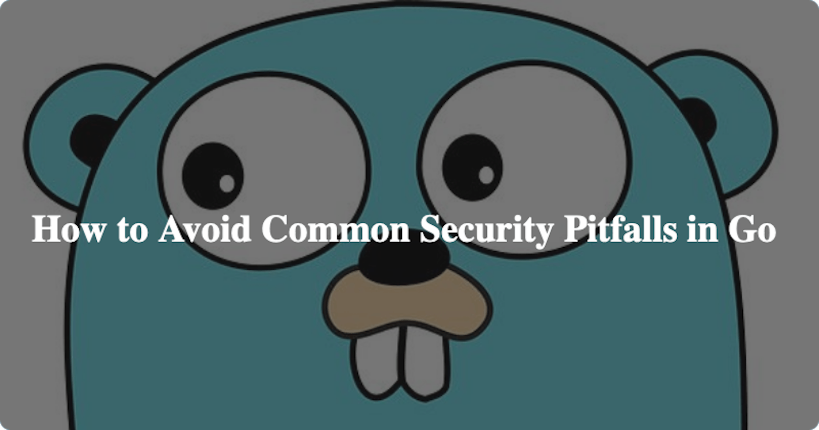 How to Avoid Common Security Pitfalls in Go