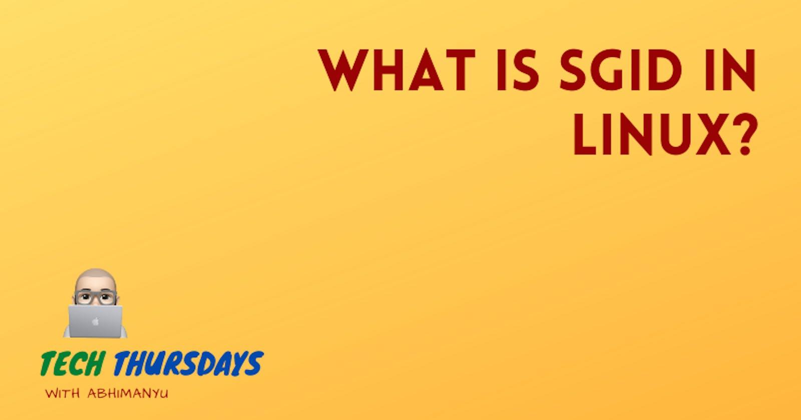 What is SGID in Linux?