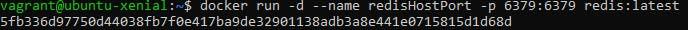redis_HostPort.png
