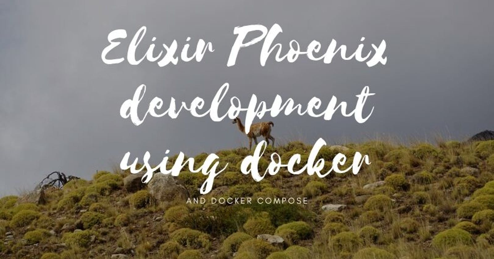 Elixir Phoenix development using Docker and Docker-Compose