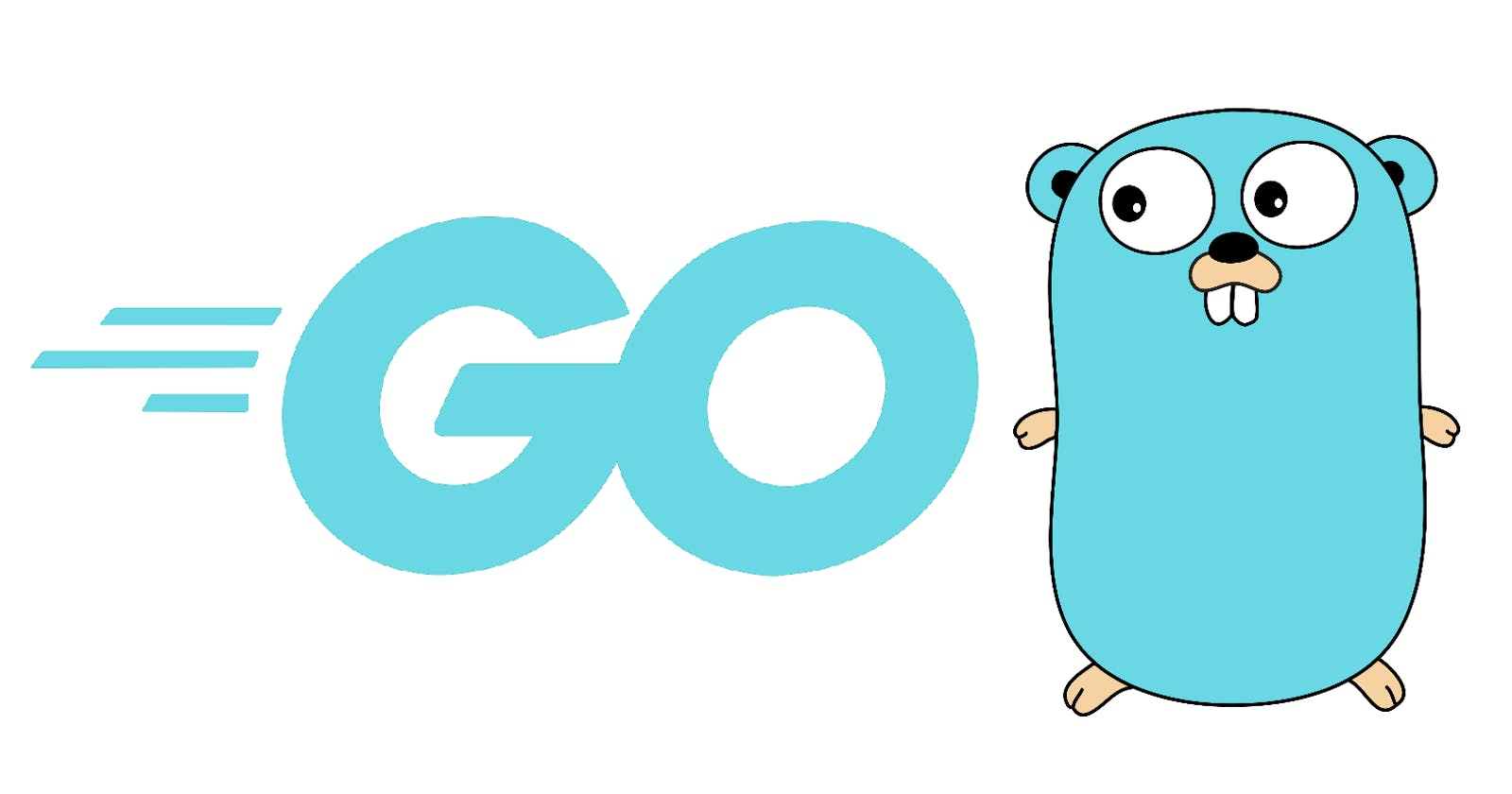 Introduction to Google Go - Beginner Guide.