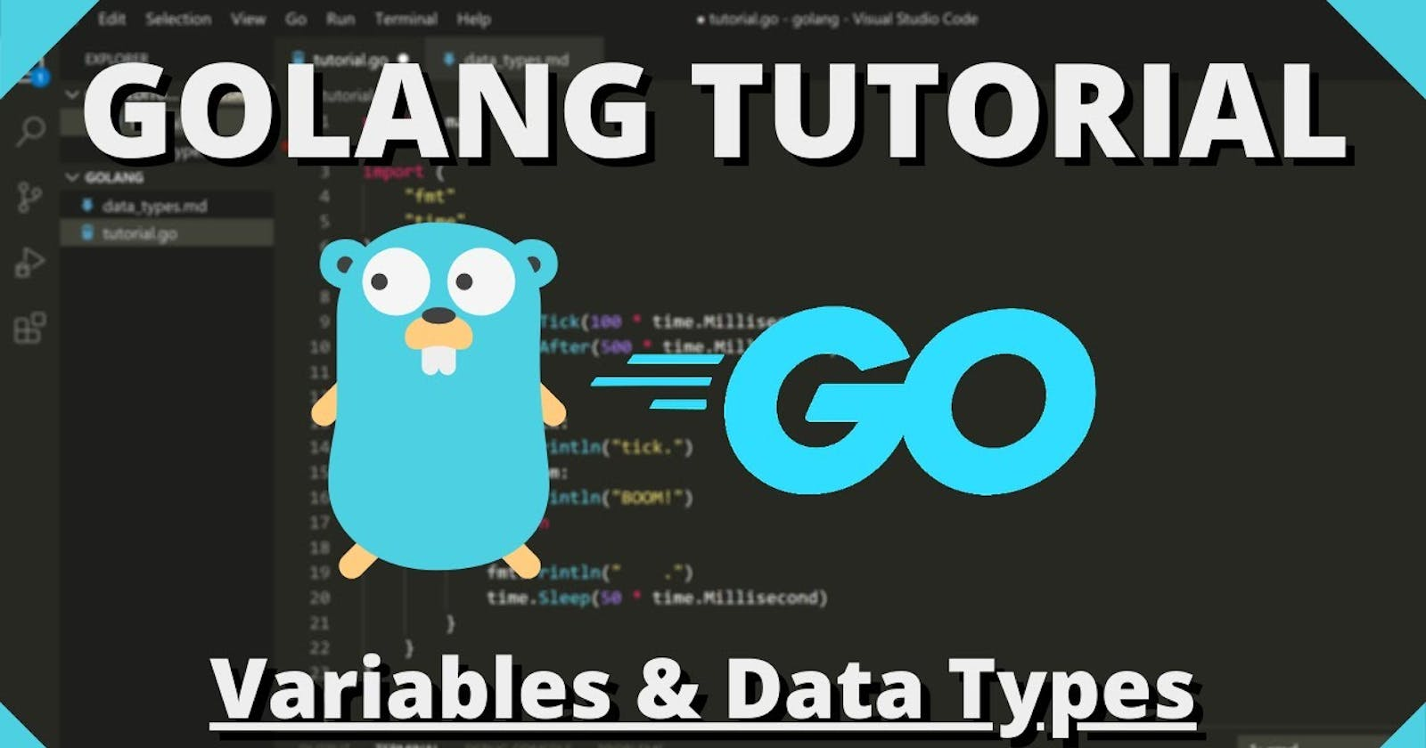 Understanding Variables and Data types in Go.