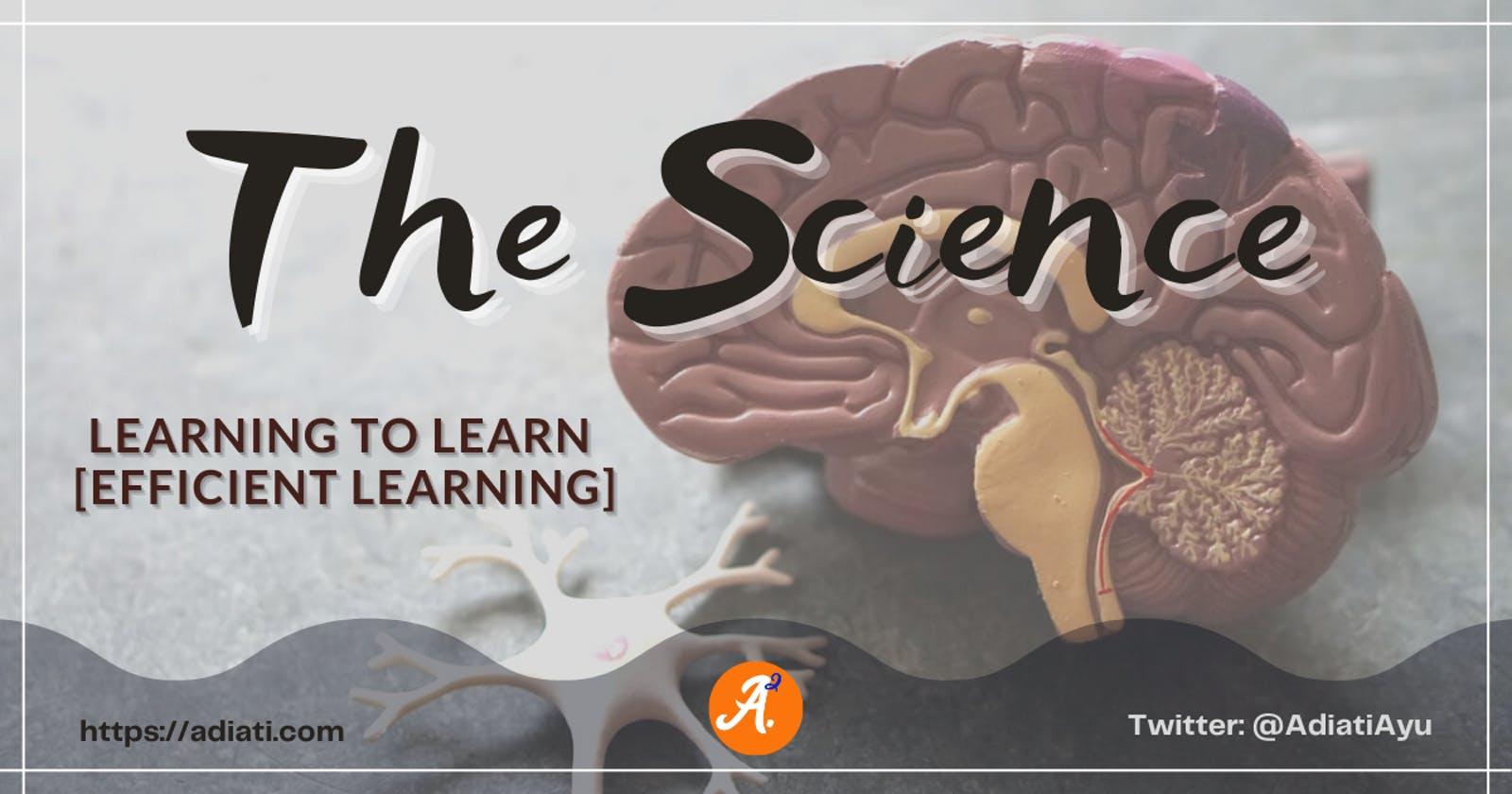 Learning To Learn [Efficient Learning]: The Science