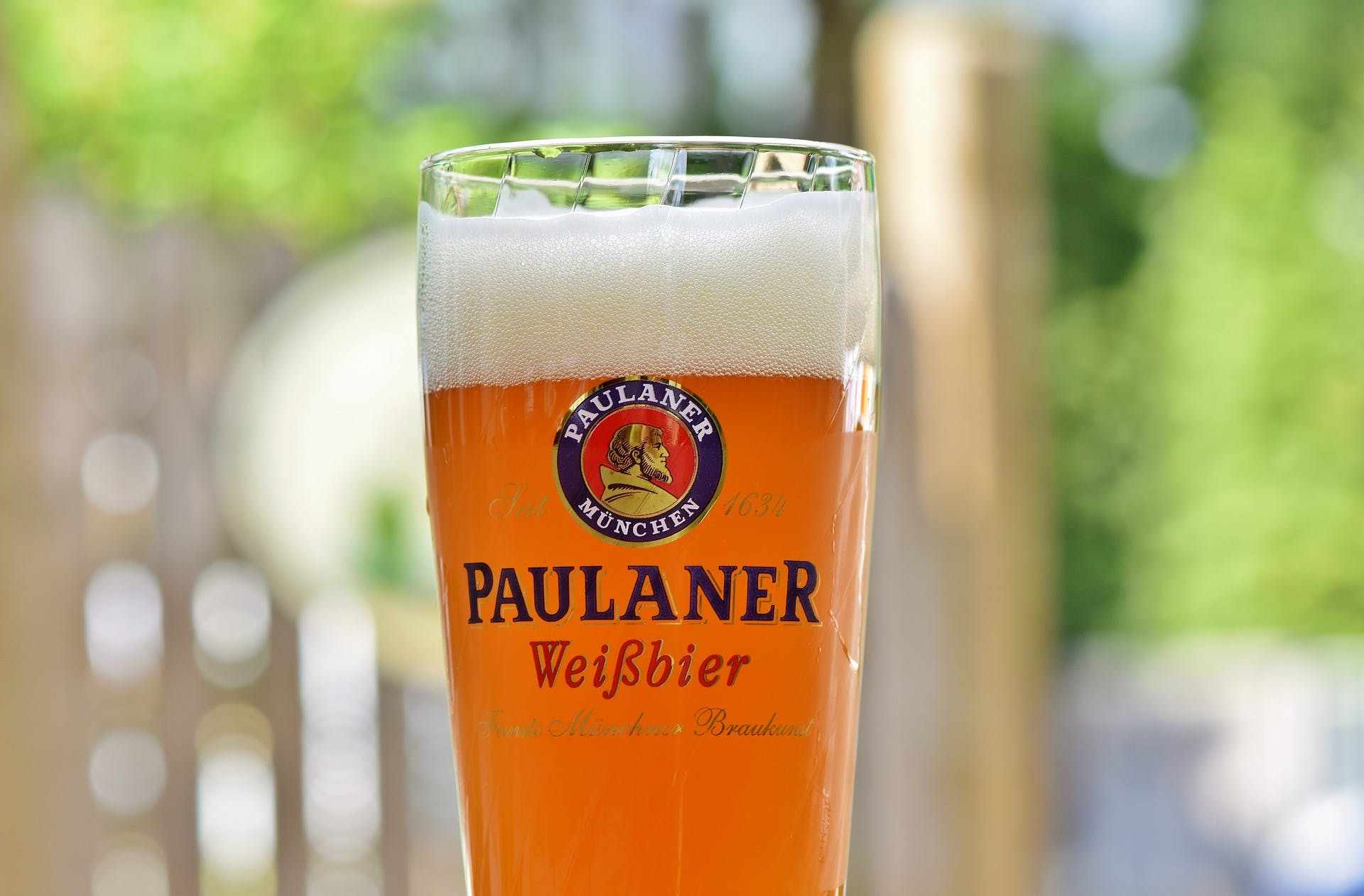 photo of paulaner wheat beer in a glass with the logo