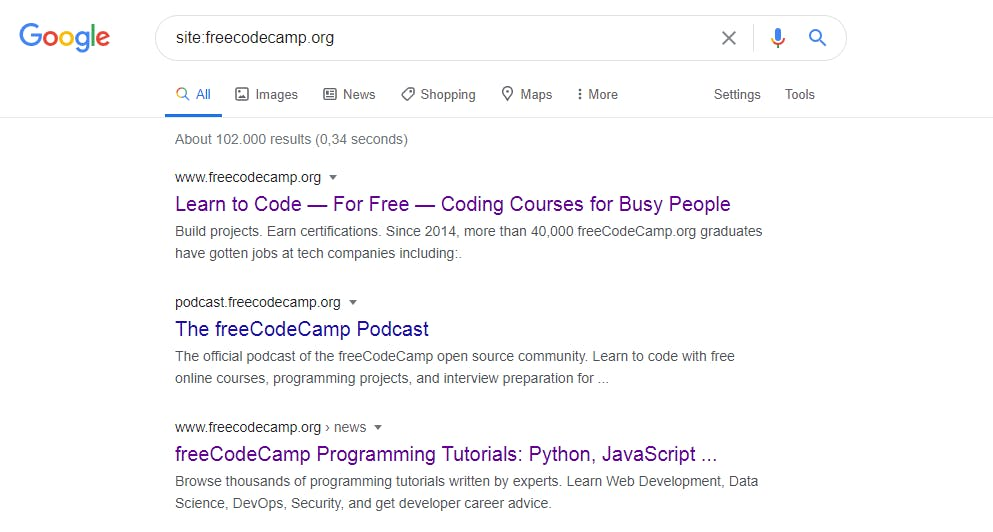 google-site.PNG