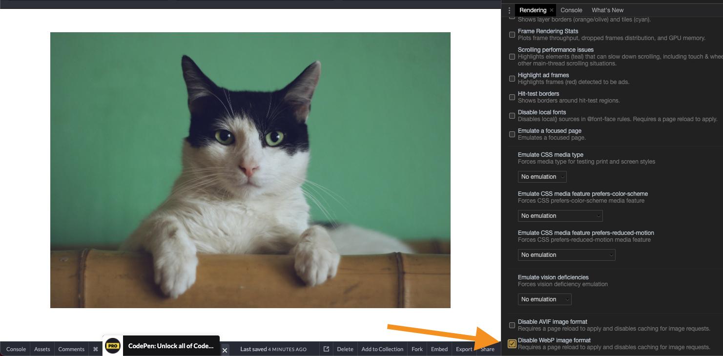 HTML Picture jpeg fallback