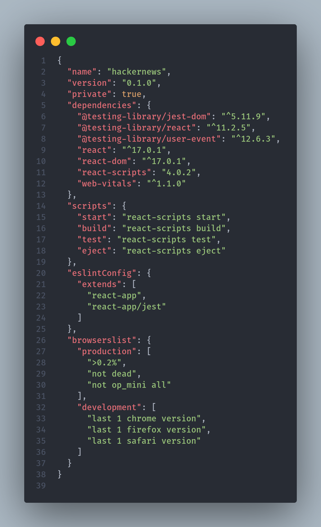 package.json preview