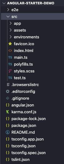 Angular basic project structure