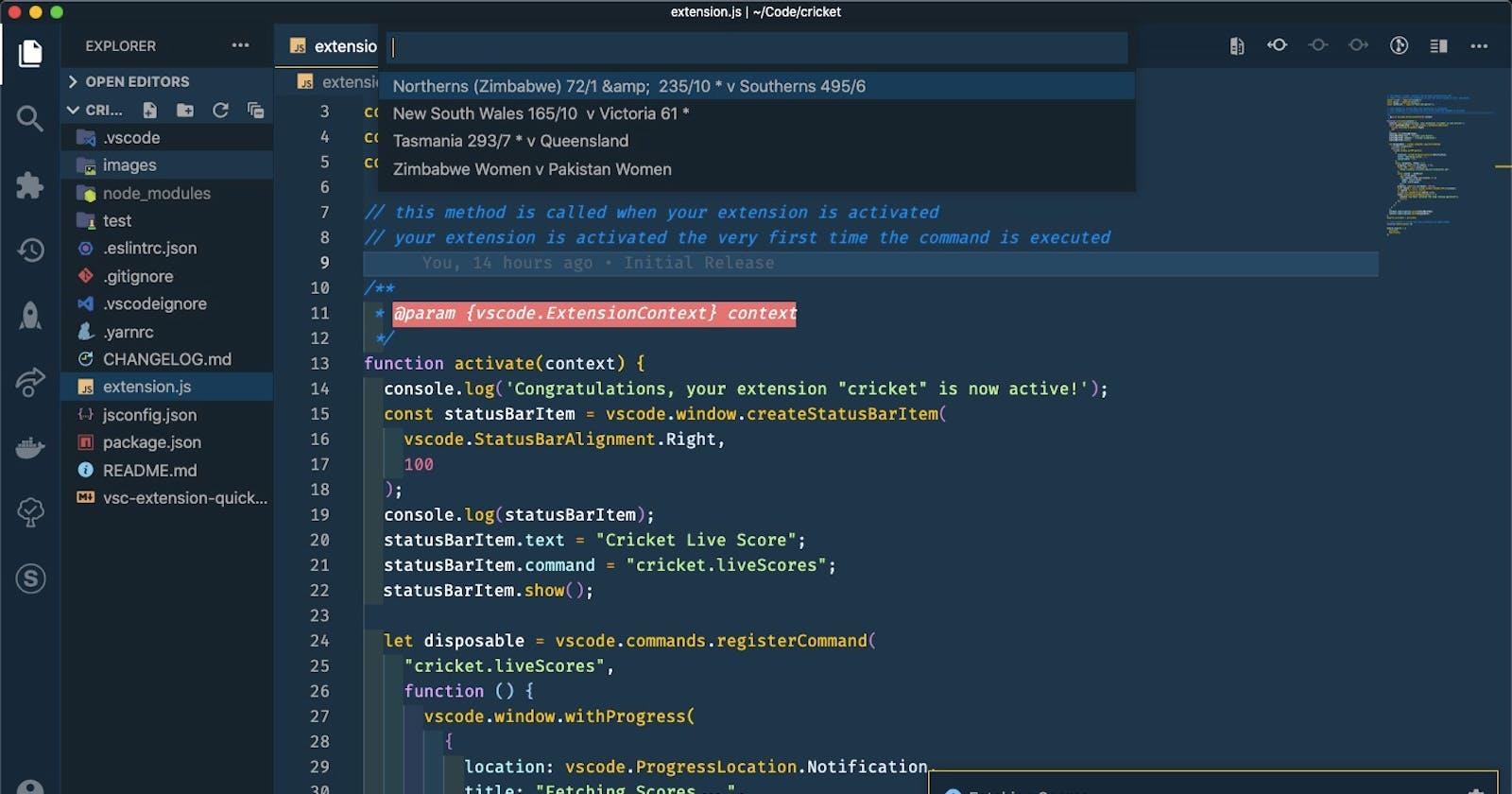 Cricket Fans inside Visual Studio Code?