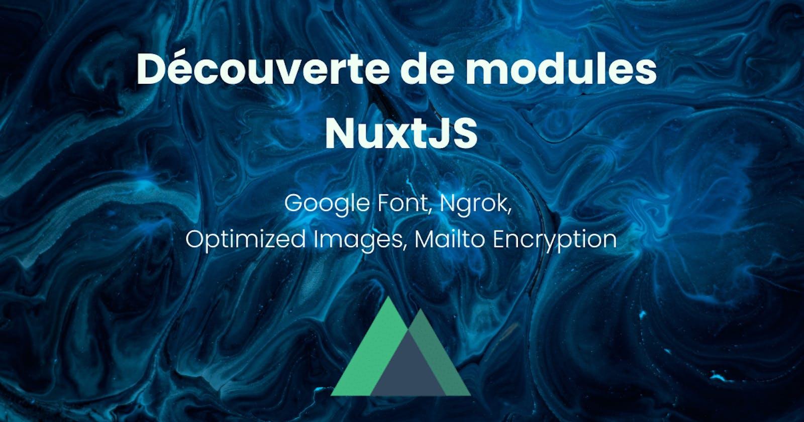Découvrons quelques modules NuxtJS