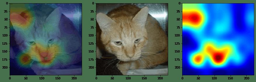 Cat_output.png