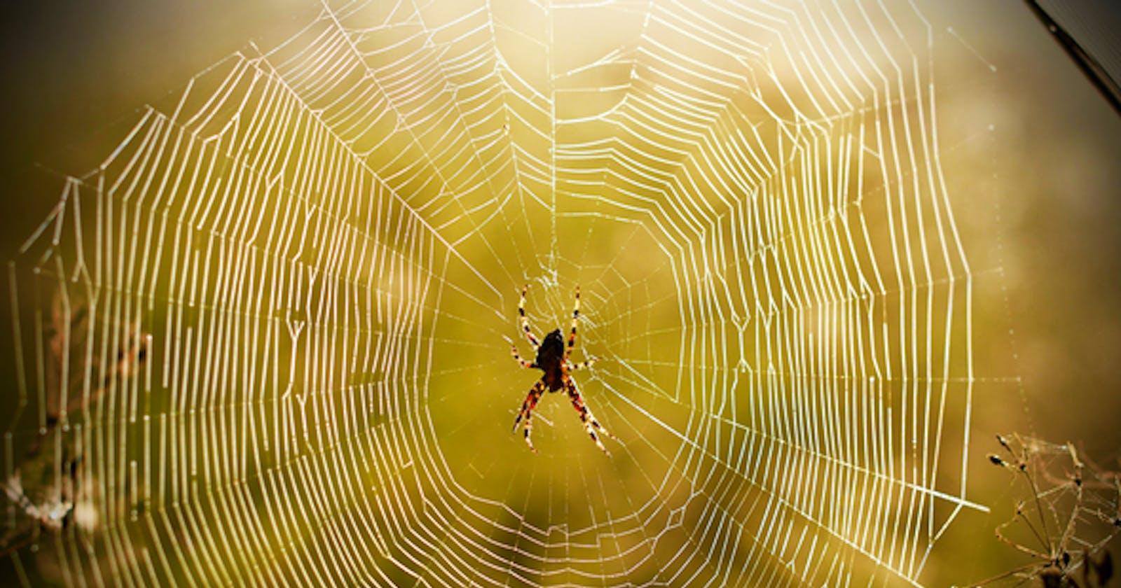 Scrapy - your neighborhood spider!