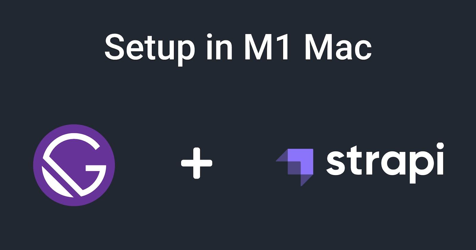Setup Gatsby with Strapi in M1 Mac