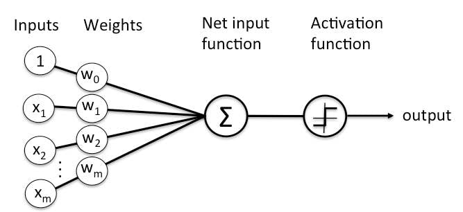 general-diagram-of-perceptron-for-supervised-learning.jpg