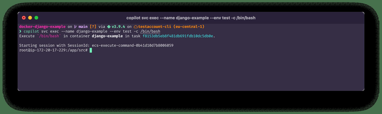 terminal command: copilot svc exec --name django-example --env test -c /bin/bash