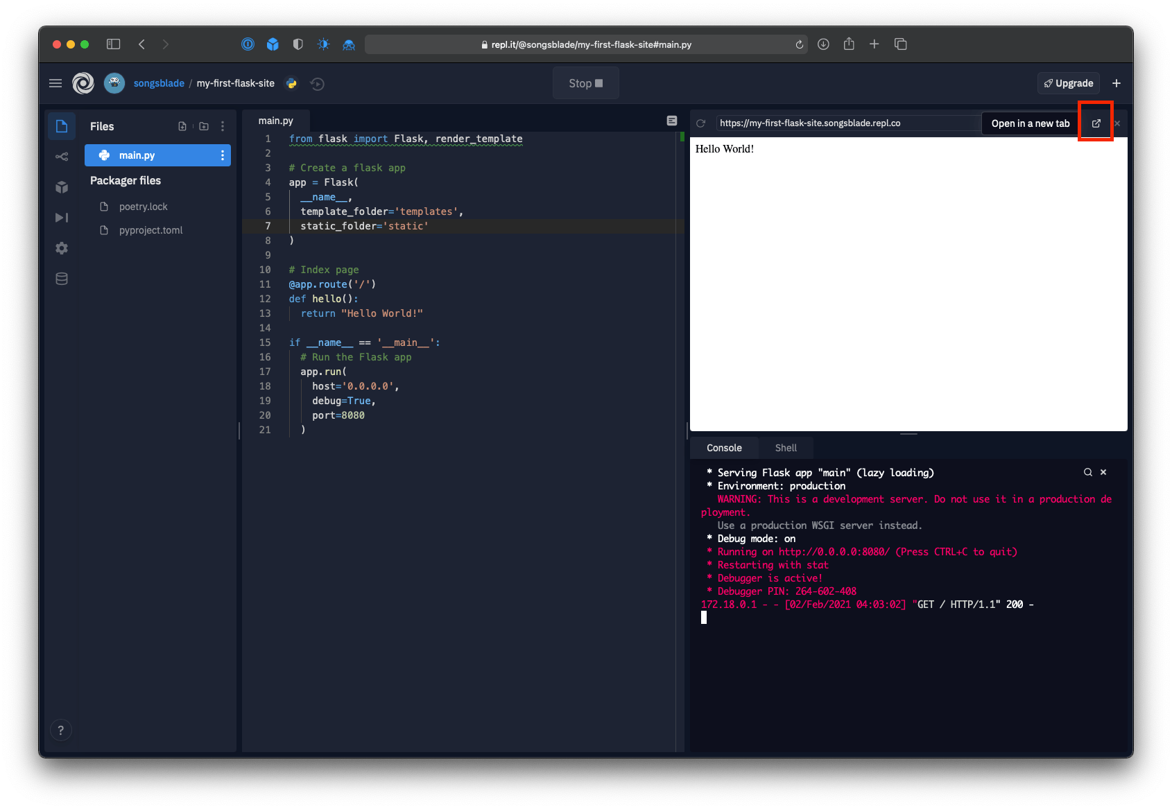 """Repl editor with the """"Open in a new tab"""" button highlighted"""