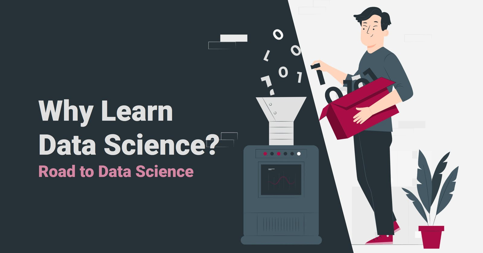 Why Learn Data Science?