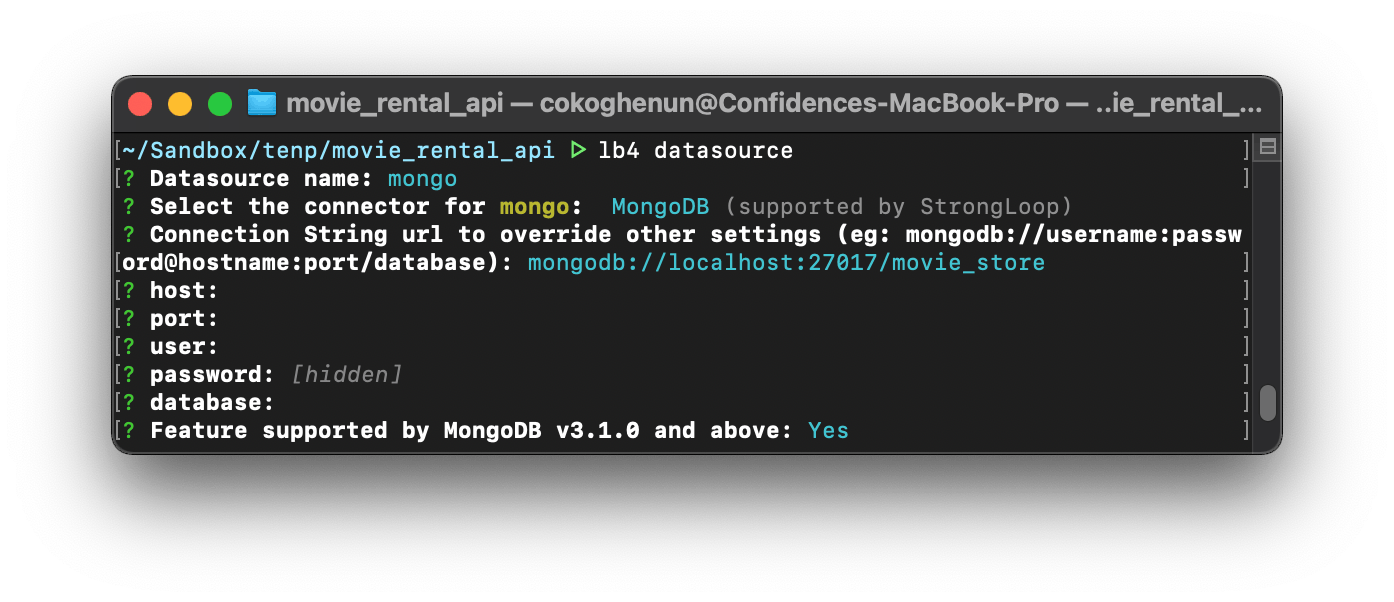 4-configuring the mongo datasource.png