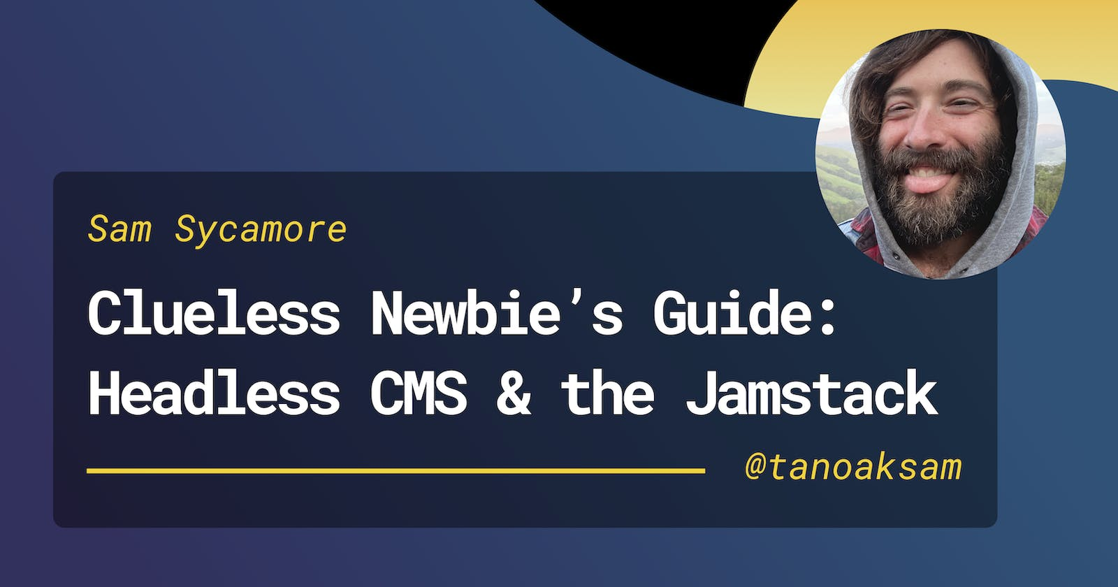 A Clueless Newbie's Guide to Headless CMS & the Jamstack
