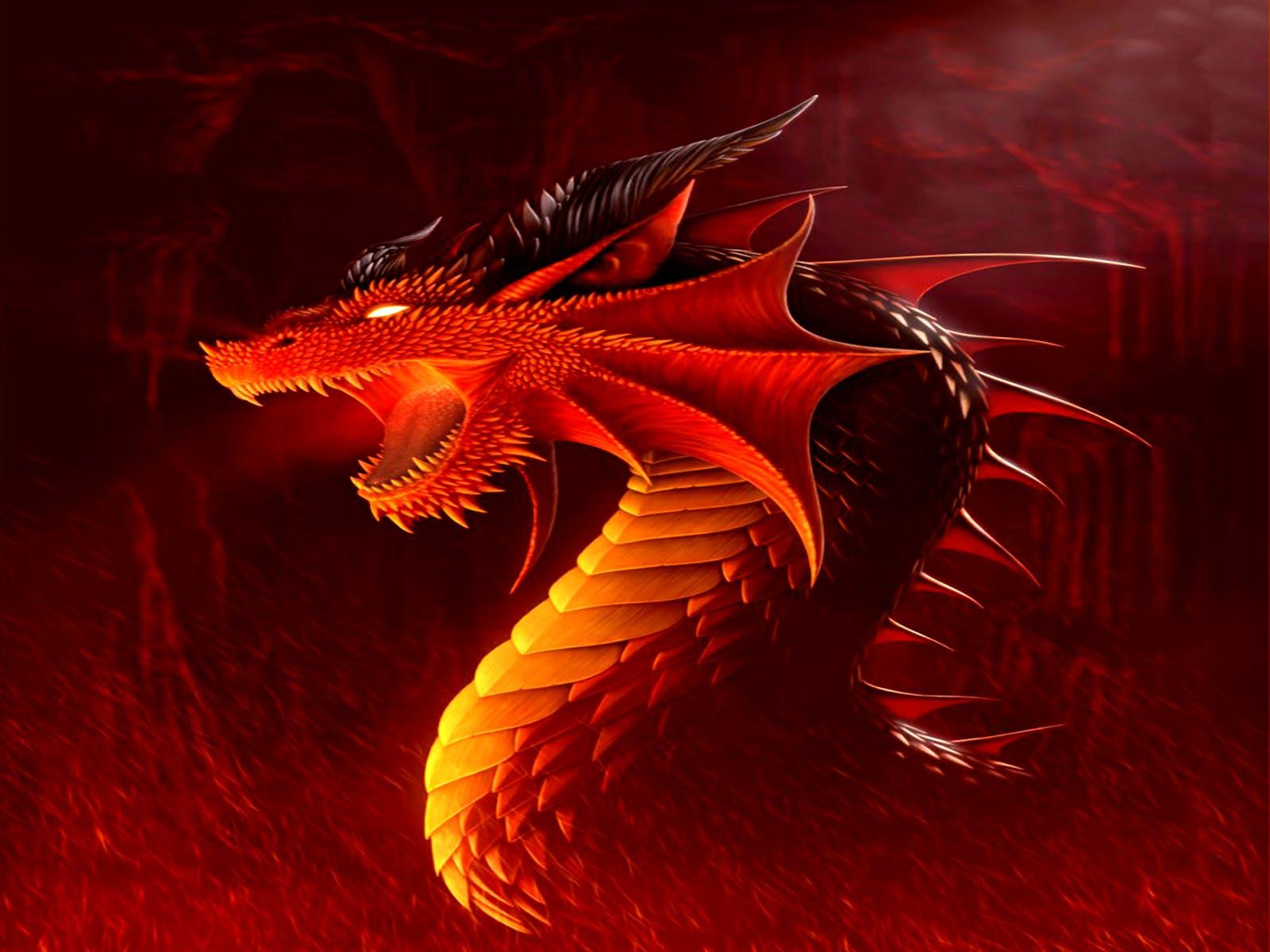 dragon1.jpeg