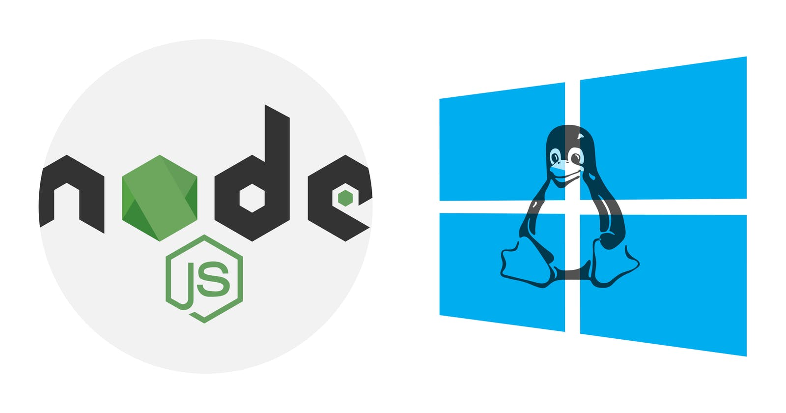 Setting up Nodejs with nvm on WSL 2