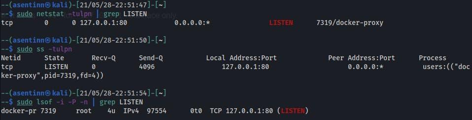 Open ports after docker run