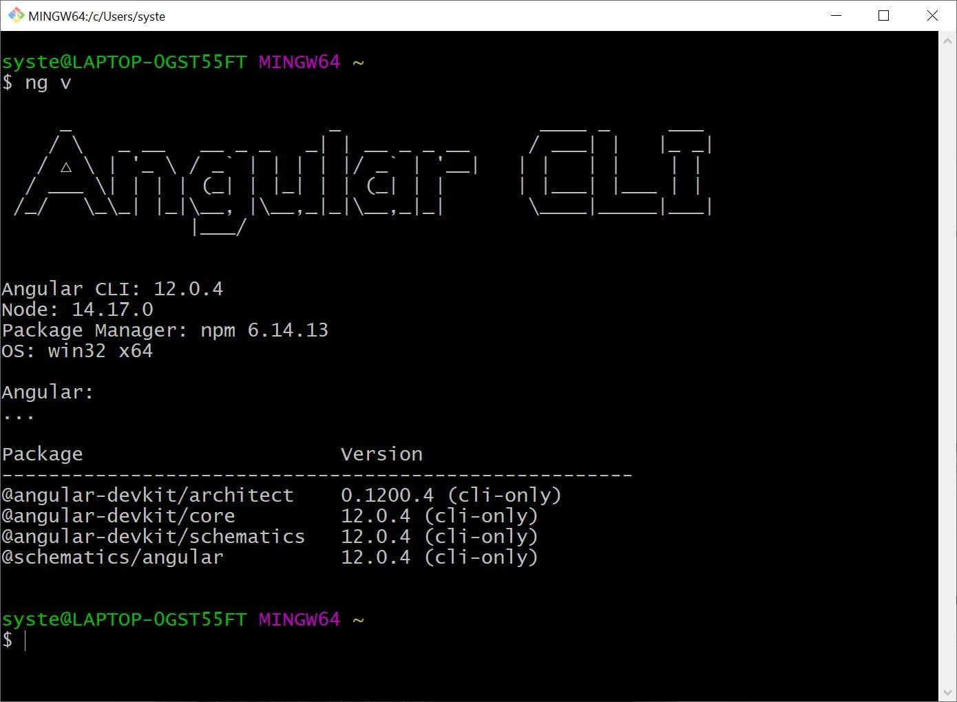 angular-cli-bash.JPG