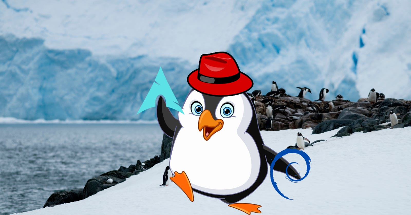 Is Linux the best operating system to choose?