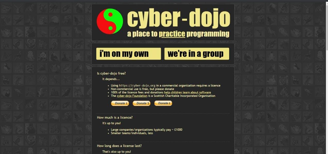 cyber dojo.jpeg