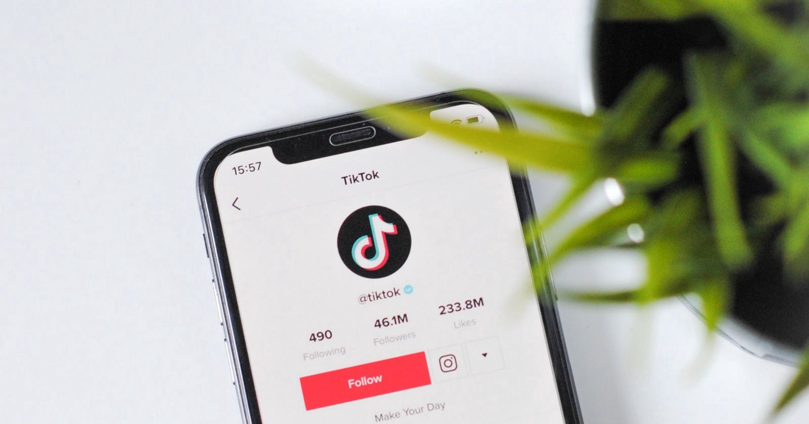 How a Woman on TikTok Earns Millions by Showing AmazonProducts
