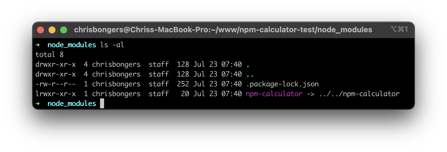 Link a local NPM package