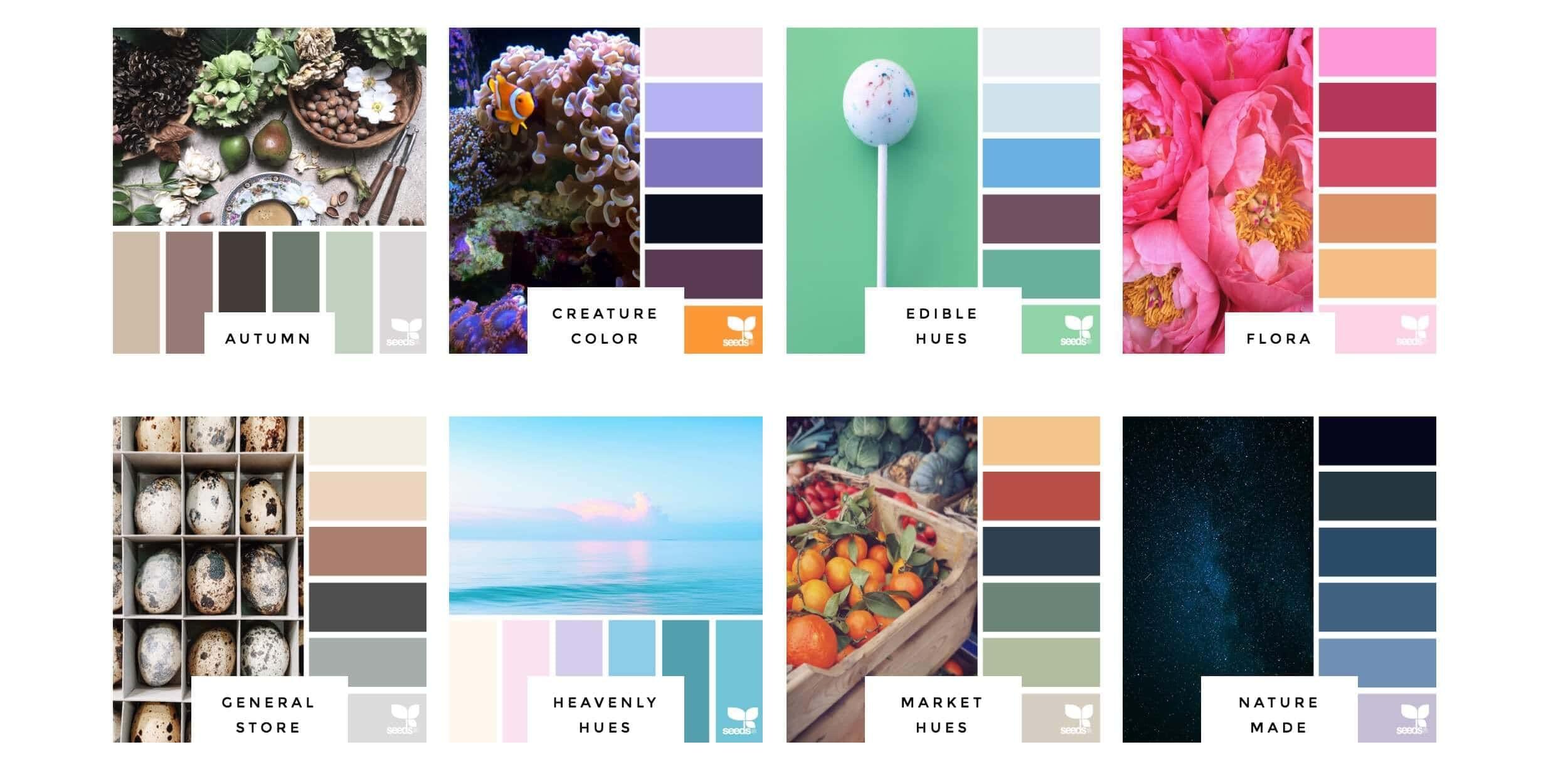 design-seeds-1.jpg