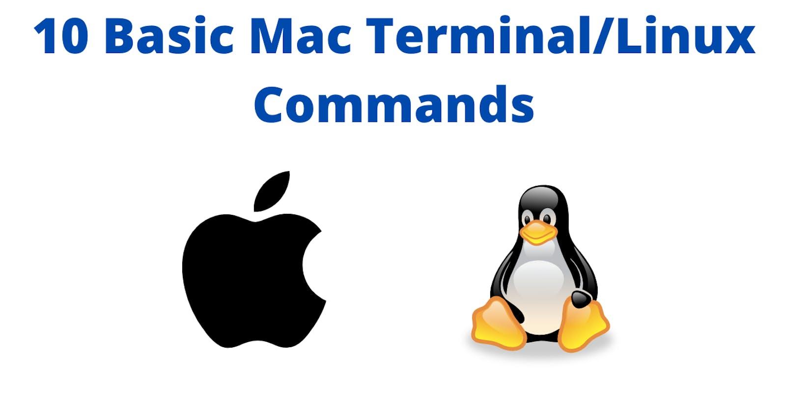 10 Basic Mac Terminal/Linux commands