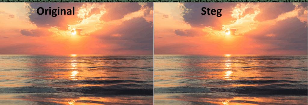 steg-sunset-1024x350 (1).png