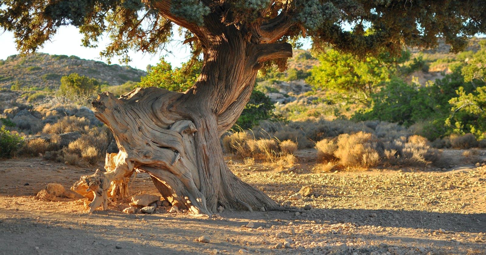Tree: efficient traversal with parent pointer