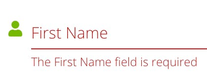 The First Name field is required.png