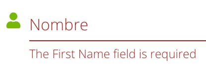 The First Name field is required 2.png