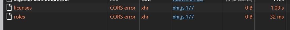 CORS Error Dev Tools