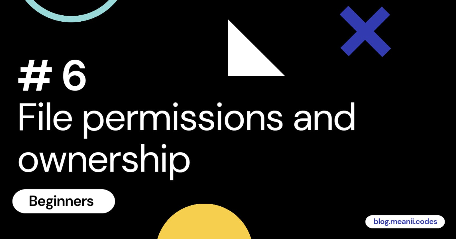 # 6 Beginners - File permissions and ownership